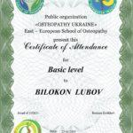 DIPLOMA basic BILOKON LUBOV