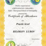 DIPLOMA practic BILOKON LUBOV