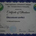 Дискодуральный конфликт