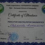 Перкуссионная и пальпаторная диагностика